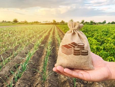 Não basta gerar tecnologia, é preciso simplificar o acesso ao crédito rural