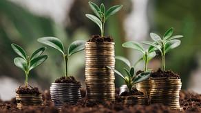 Investir no agronegócio, é um bom negócio