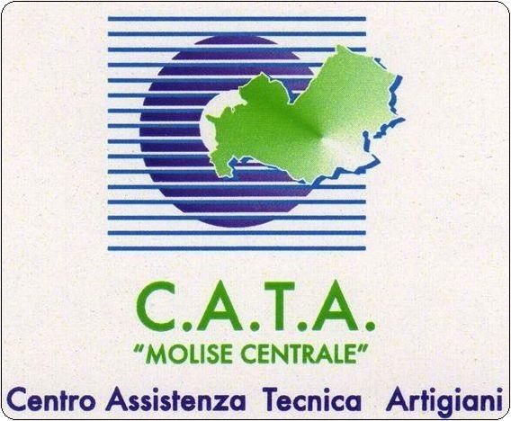 C.A.T.A1