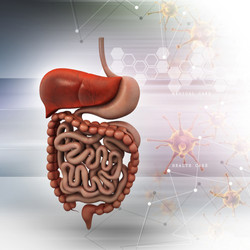 gastroenterology-icd-10-codes-top-icd-10-codes-major-code-changes-icd-10-code-changes-icd-10-convers