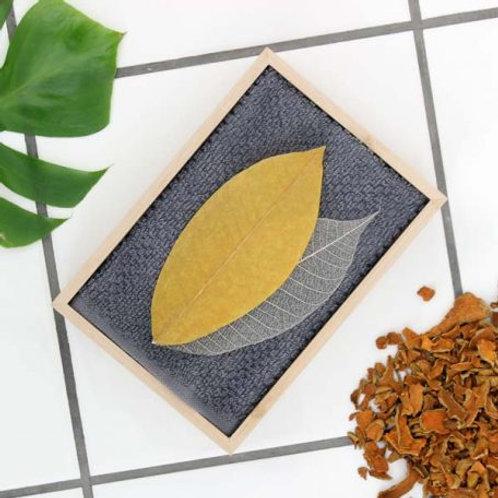 Såpeblad – Gurkemeie