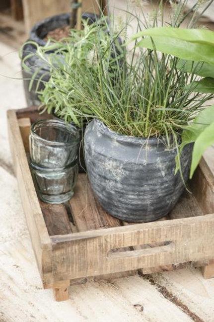 Potteskjuler Athen - grønnvasket - stor