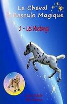 cheval bascule mustangs.jpg