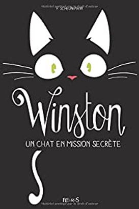 winston chat mission secrete.jpg
