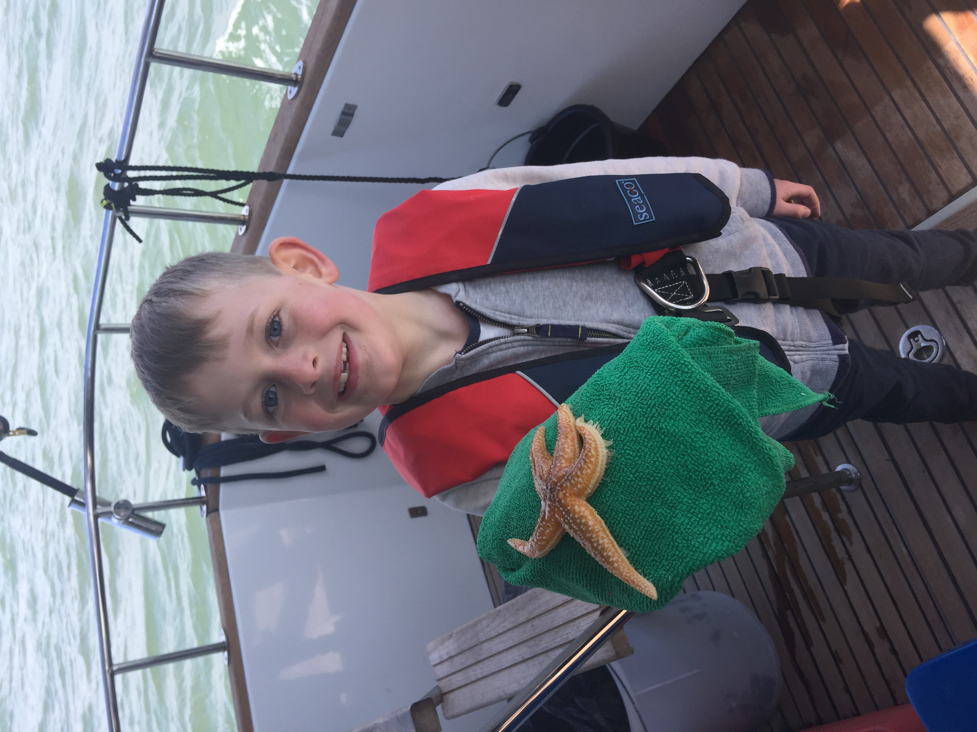 Starfish caught and safely returned