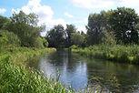 River-Test3a.jpg