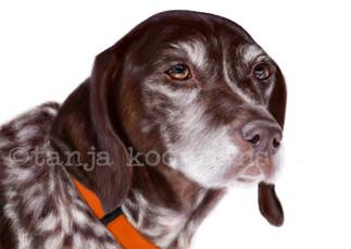 Portrait of Cleo