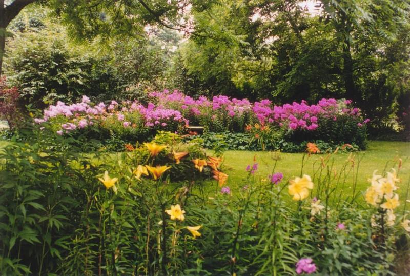 july-yellowlilies-phlox.jpg