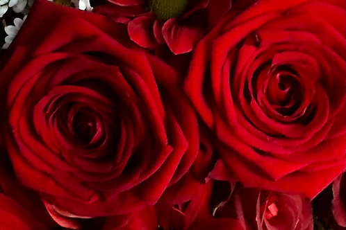 Be My Bloomin' Valentine - Just Red Roses