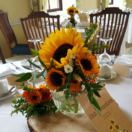 Sunflowers at Hill Place Swanmore