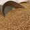 Thumbnail: Organic Einkorn Wheat Berries