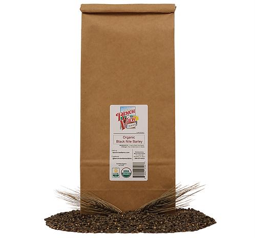 Organic Black Nile Barley