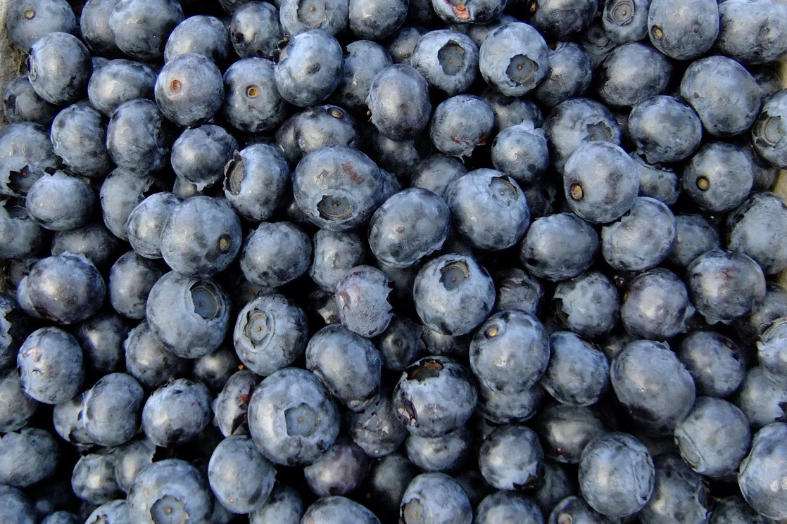 blueberries_fruit_eat_edited