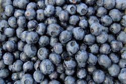 blueberries_fruit_eat_edited