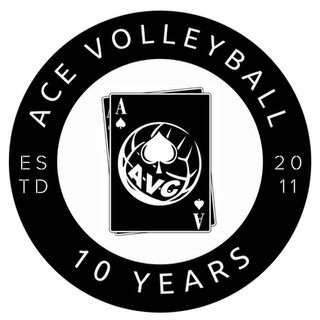 Ace Volleyball