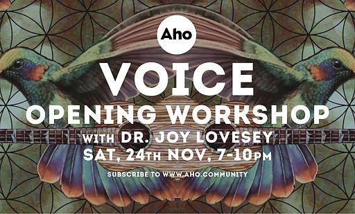 Voice Openine Workshop with Joy Lovesey.