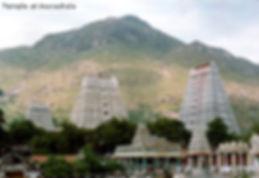 pics_arunachala_and_temple.jpg
