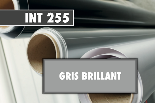 INT 255 - PVC Gris brillant