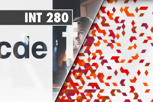 INT 280 - PVC Dépoli blanc *Application à sec*