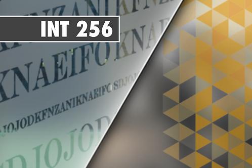 INT 256 - PVC Dépoli incolore