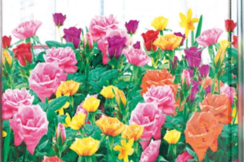 Films Adhésifs vitrages décoratifs fleurs