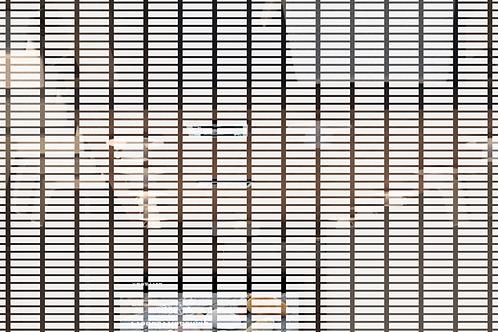 INT612 - Rectangles blancs