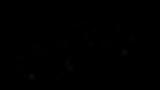 logo bibi schwarz.png