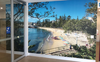 Comercial wall mural fit outs.