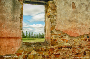 Wall and view TEXTURES.jpg