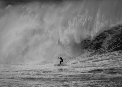 Massive Surf Coogee