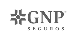 gnp-gris.com.png