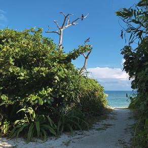 Taketomi | Aiyaru Beach