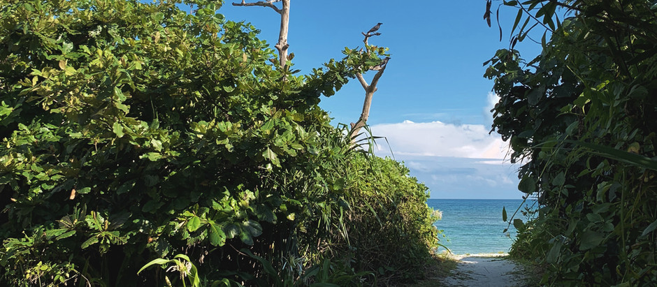 Taketomi   Aiyaru Beach