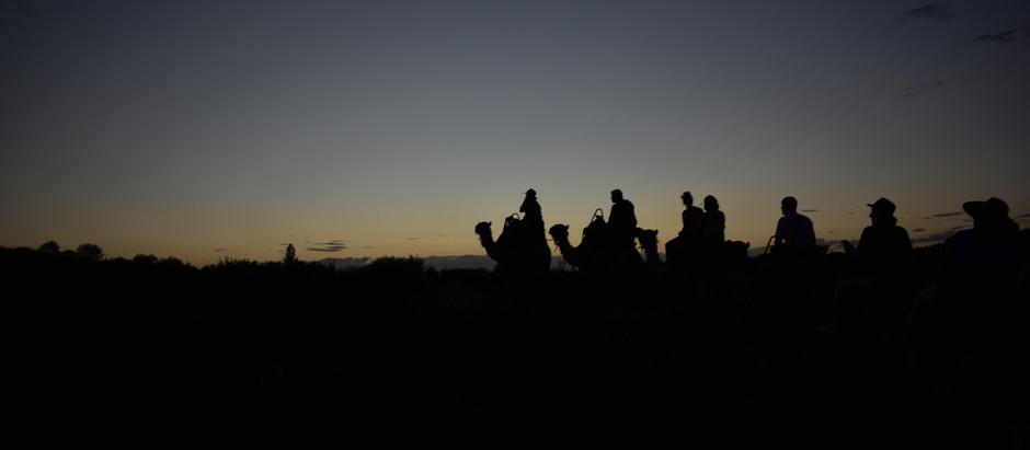 Uluru | Camel Riding