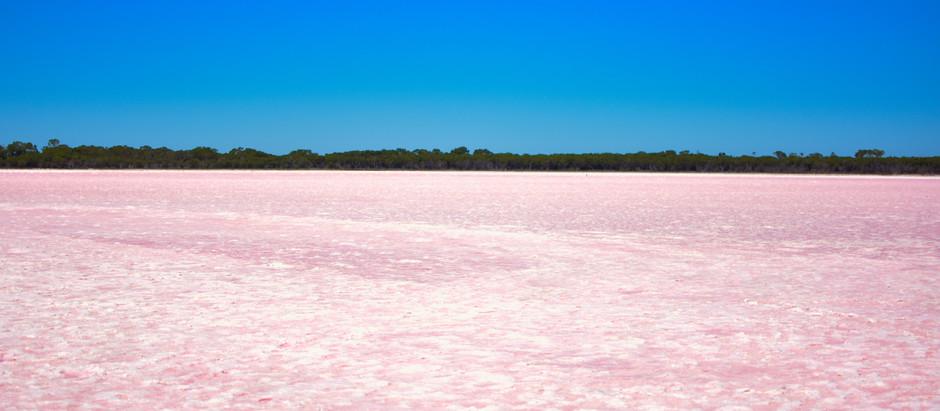 Melb | Loch Iel (Pink Lake) Lake Reserve