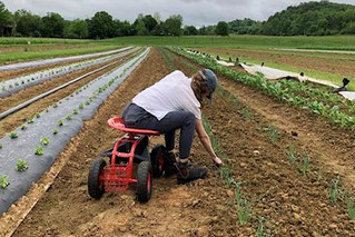 AgrAbility Virginia continues serving farmers during pandemic