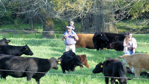 Pandemic brought unexpected demand for N.C. beef producers
