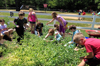 Is agritourism poised for a rebound?