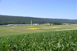 Farmland acreage falls in Pa. while population rises in prime agricultural areas