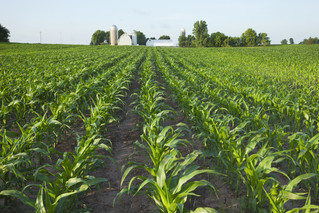 Ag Census shows 96% of farms in the U.S. are family-owned