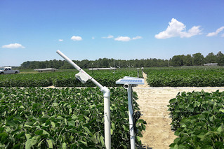 Remote cameras may soon be monitoring your crop fields