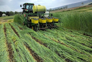 Report finds mixed results for farm bankruptcies