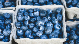 "AFBF ""disappointed"" in blueberry investigation ruling"