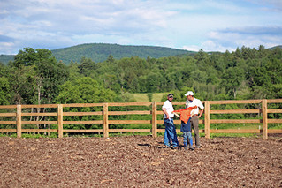 UVM researcher encourages use of woodchips to reduce winter pasture damage