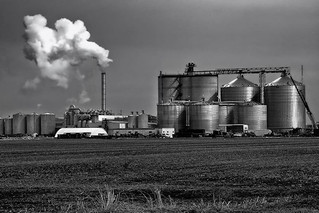 Feds hope to increase the use of biofuels with additional funding