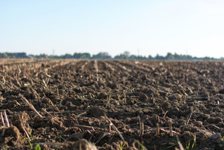 USDA is funding new, sustainable ag projects