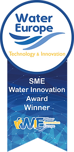 WIE_SME award badge.png