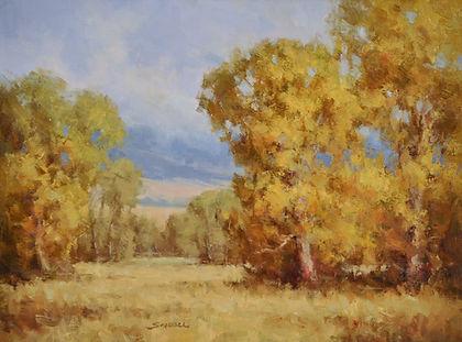 Autumn Overcast 12-16sg.jpg
