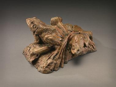 matia-frogs-v1.jpg