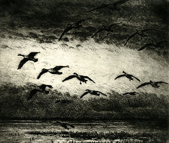 Coming Home to Roost (6.2 X 7.4 inches)-